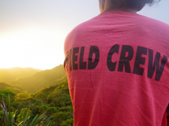OISC field crew